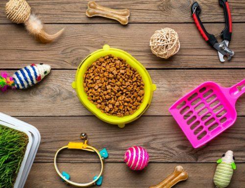 19 Best Cat Toy Storage Ideas